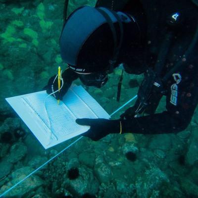 Asistente investigación submarina