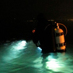 Buceo nocturno